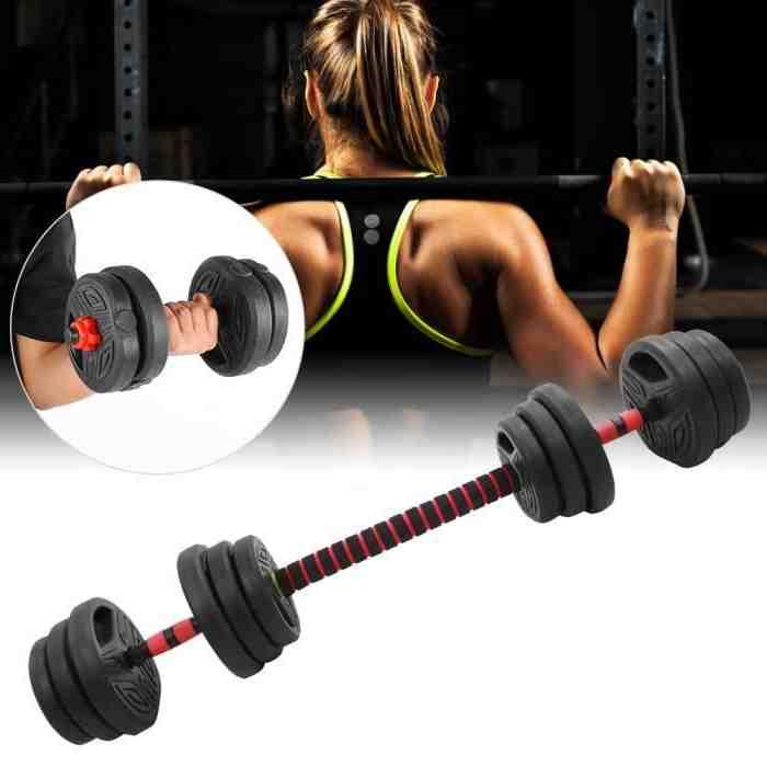 Quel poids Curl biceps ?