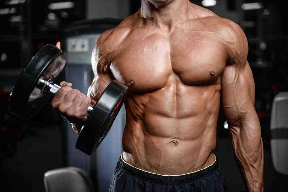 Comment prendre de la masse musculaire rapidement ?