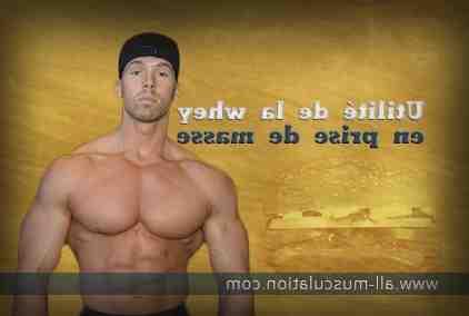 Proteines musculation prise de masse