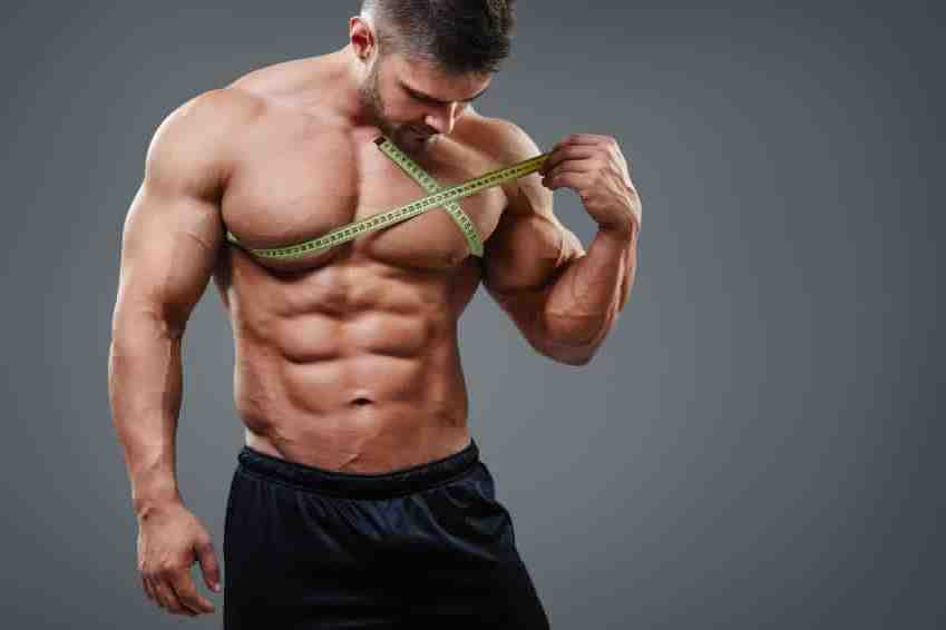 Quand manger pour prendre du muscle ?