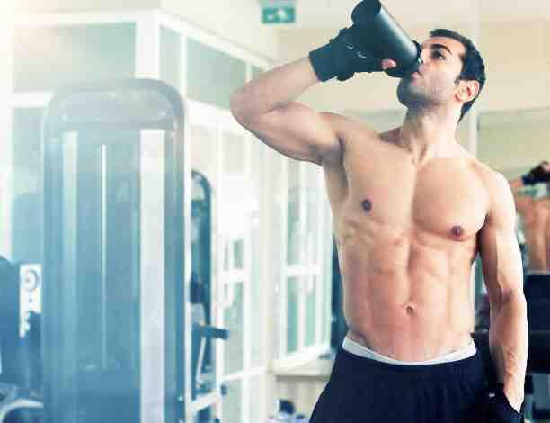 Quelle protéine prendre pour commencer la musculation ?